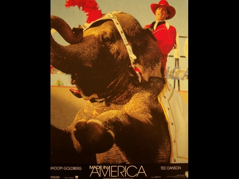 Photo du film MADE IN AMERICA