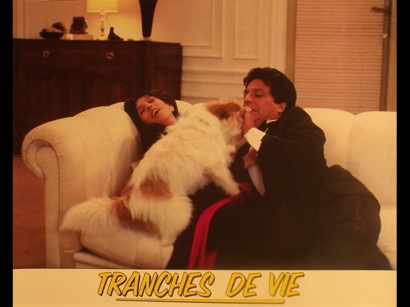 Photo du film TRANCHES DE VIE
