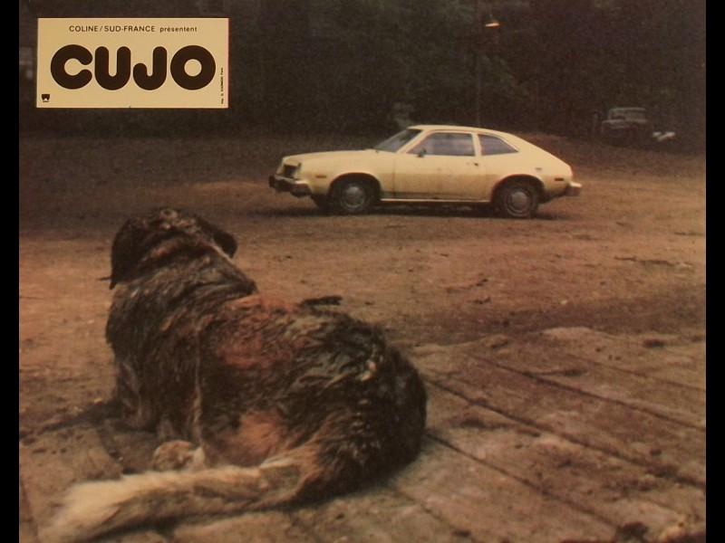 Photo du film CUJO