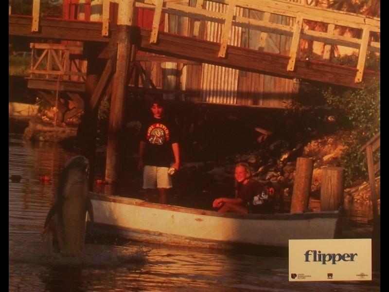 Photo du film FLIPPER